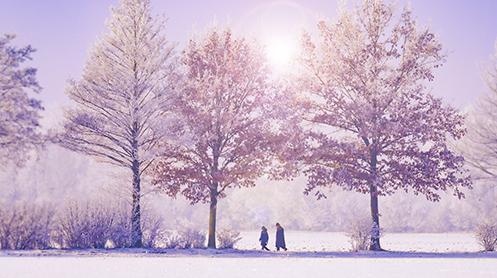 Afbeelding van een prachtig winterlandschap. In de winter kan je allemaal leuke sponsoracties voor KiKa organiseren. Klik op de afbeelding en bekijk onze leukste tips!